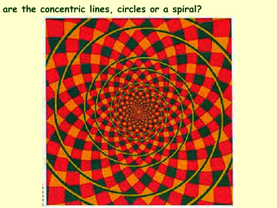 are the concentric lines, circles or a spiral