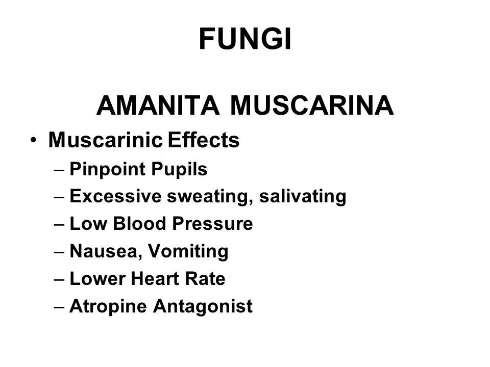 FUNGI AMANITA MUSCARINA Muscarinic Effects Pinpoint Pupils