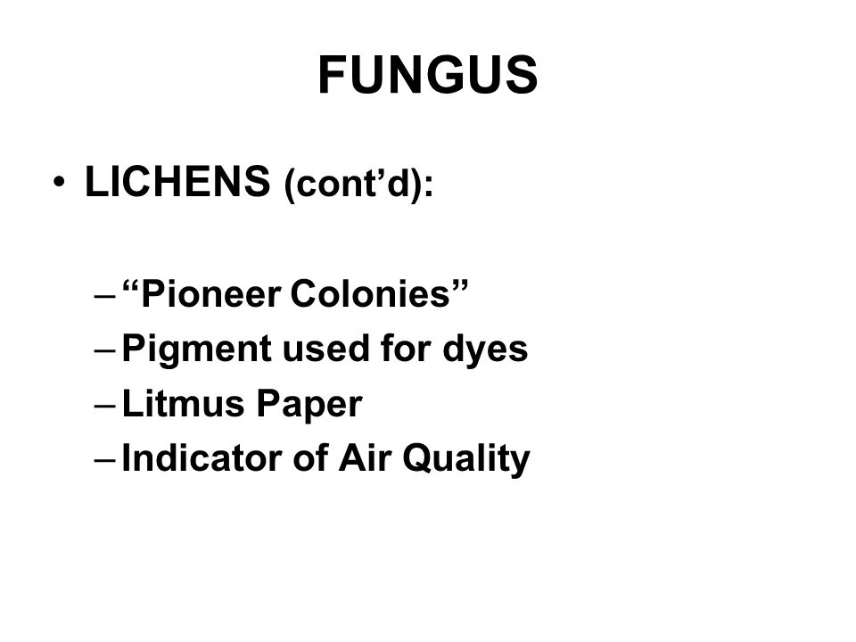 FUNGUS LICHENS (cont'd): Pioneer Colonies Pigment used for dyes