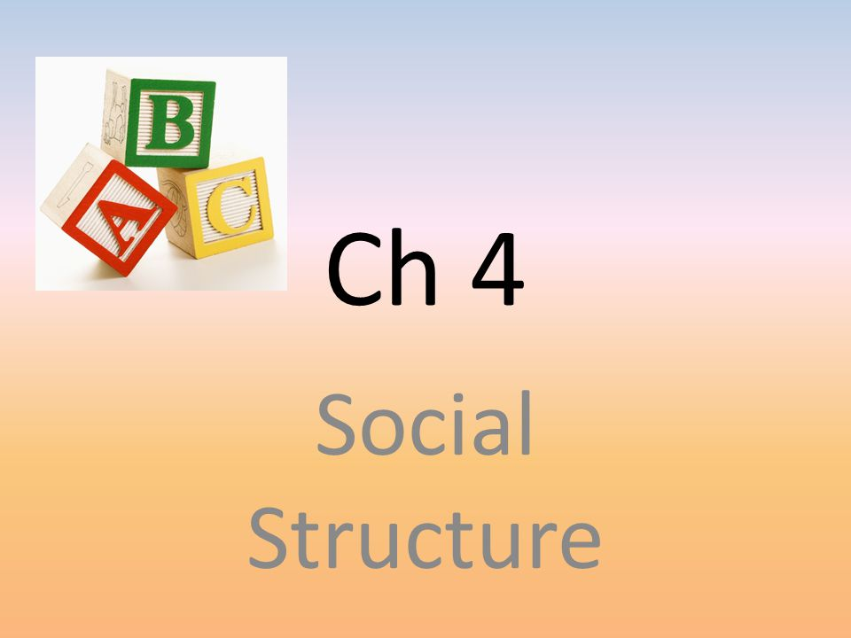 Ch 4 Social Structure