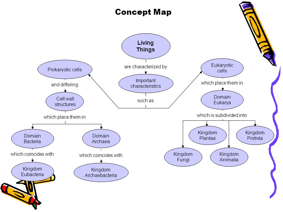 Concept Map Section 18-3 Living Things Eukaryotic cells