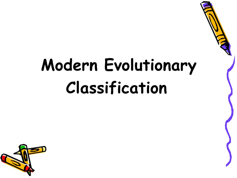 Section Outline Modern Evolutionary Classification