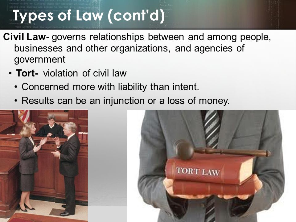 Types of Law (cont'd) Civil Law- governs relationships between and among people, businesses and other organizations, and agencies of government.