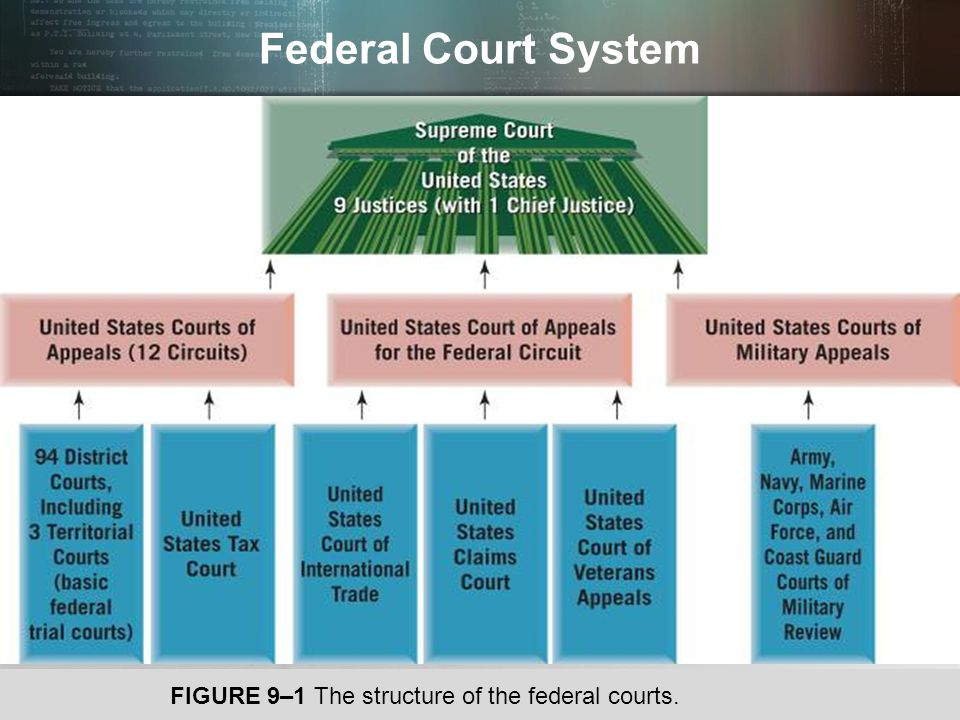 Federal Court System FIGURE 9–1 The structure of the federal courts.