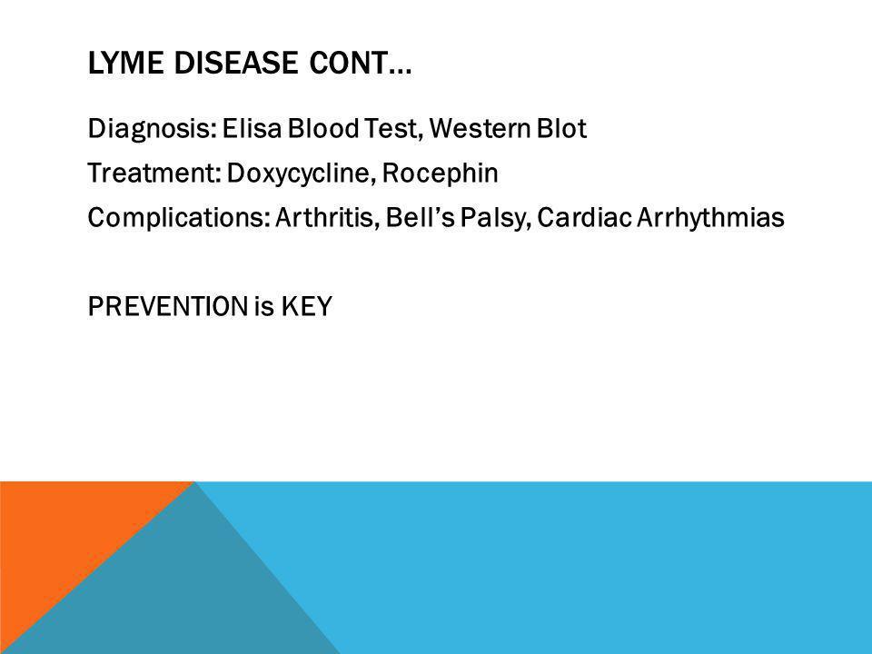 Lyme Disease cont…