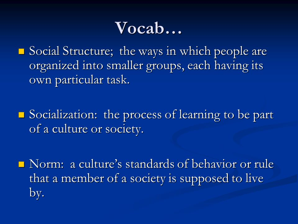 Vocab… Social Structure; the ways in which people are organized into smaller groups, each having its own particular task.