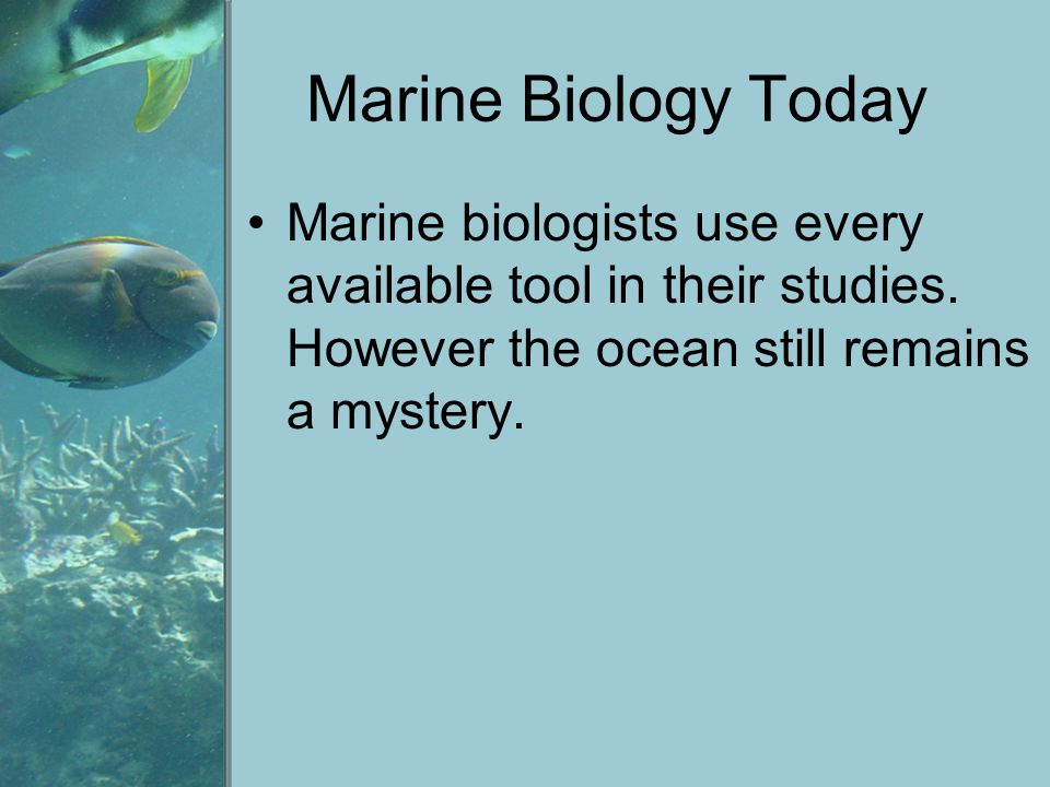 Marine Biology Today Marine biologists use every available tool in their studies.