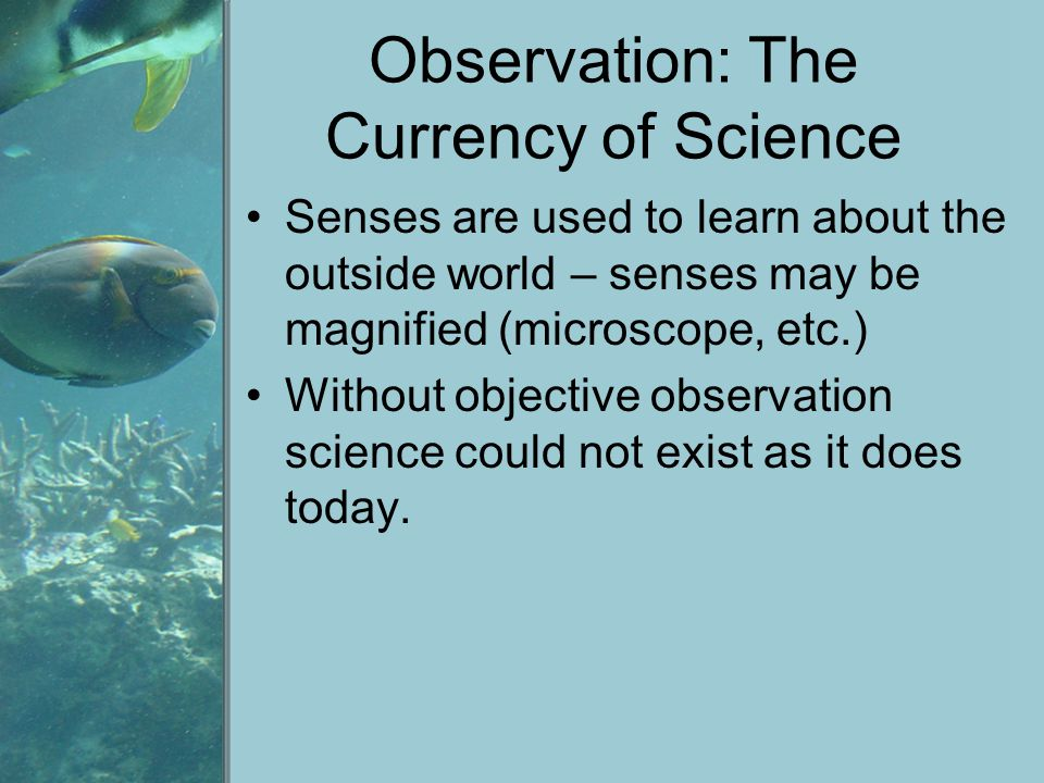 Observation: The Currency of Science