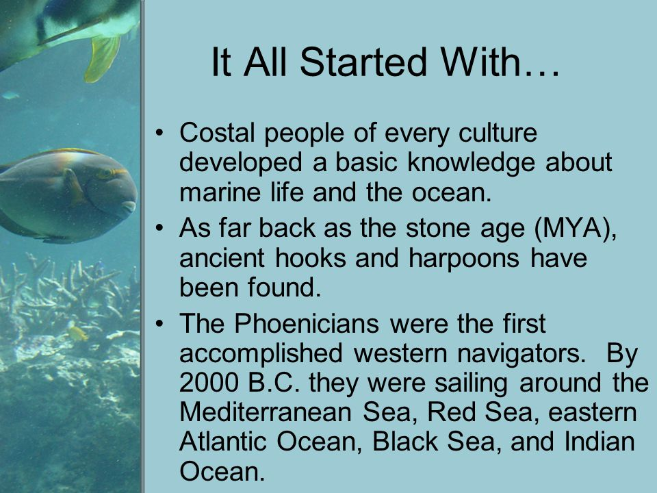 It All Started With… Costal people of every culture developed a basic knowledge about marine life and the ocean.