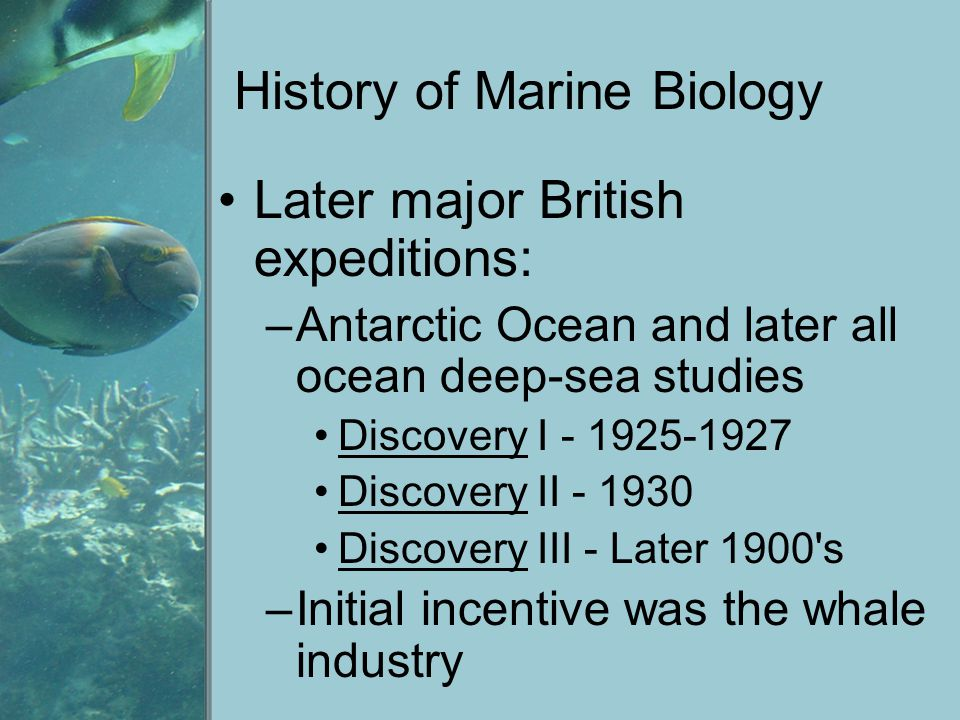 History of Marine Biology