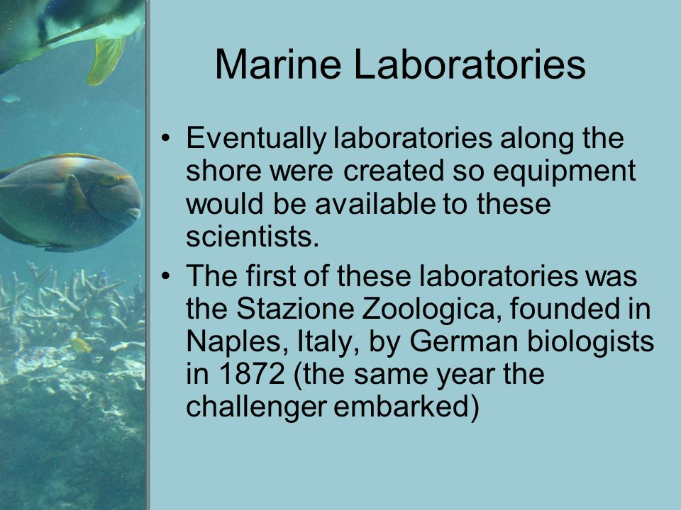 Marine Laboratories Eventually laboratories along the shore were created so equipment would be available to these scientists.
