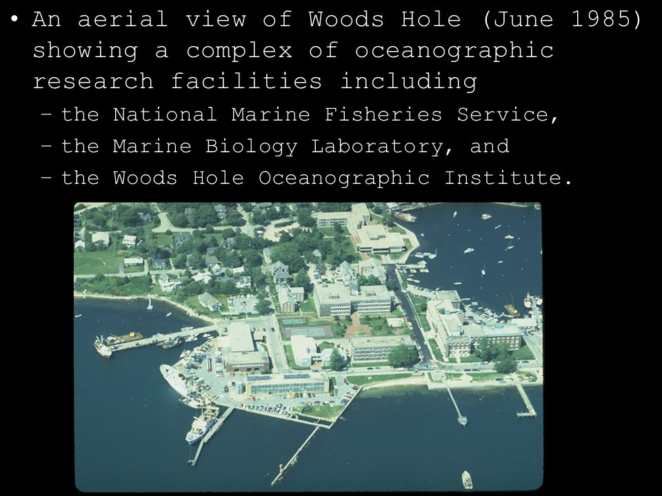An aerial view of Woods Hole (June 1985) showing a complex of oceanographic research facilities including