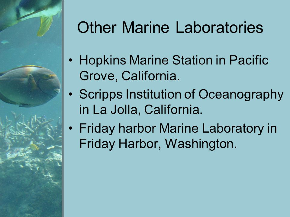 Other Marine Laboratories