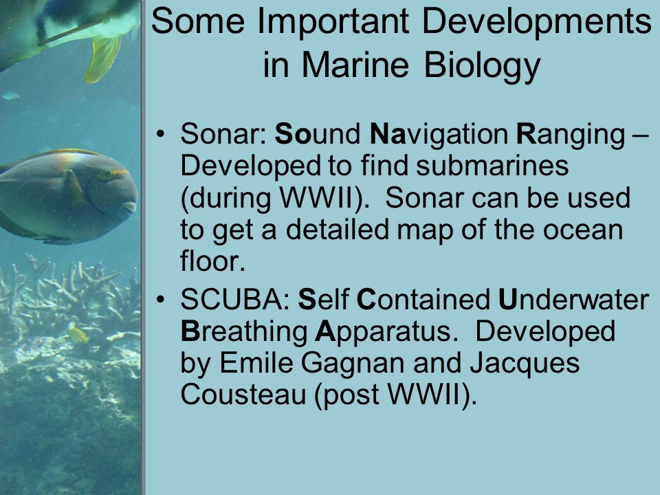 Some Important Developments in Marine Biology