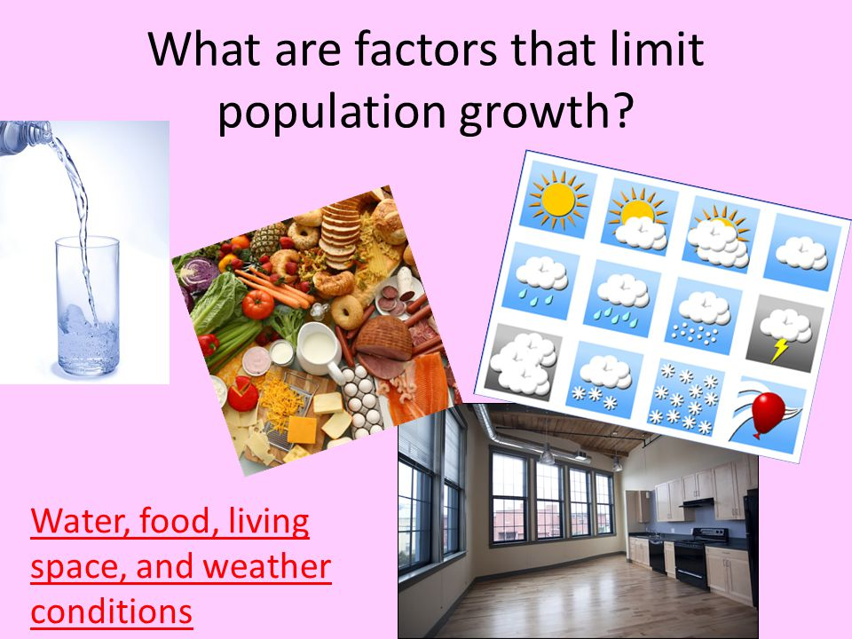 What are factors that limit population growth