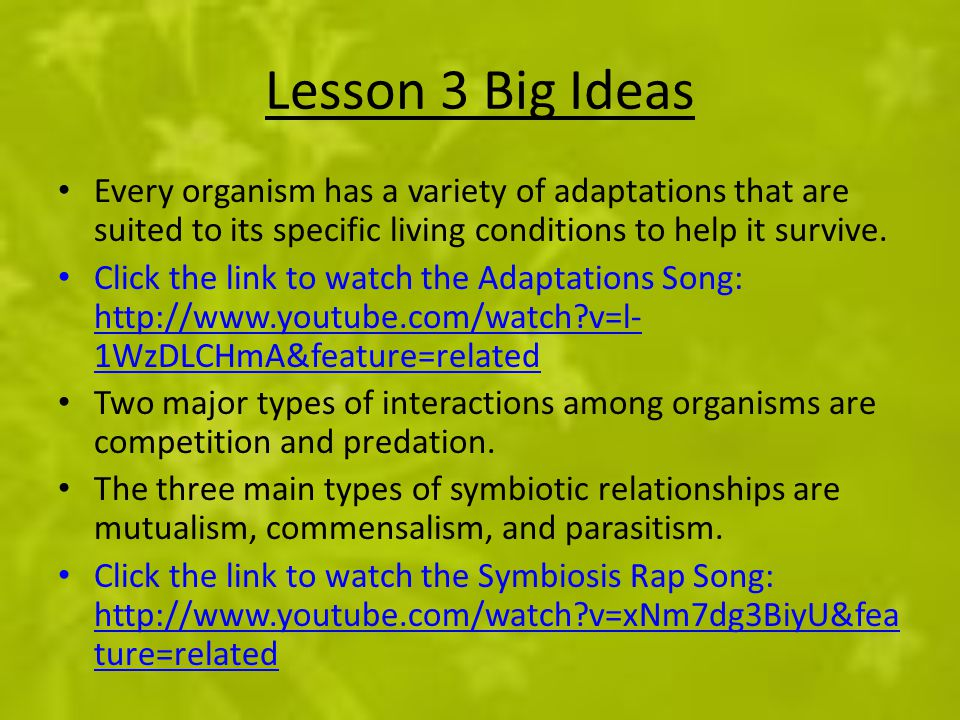 Lesson 3 Big Ideas Every organism has a variety of adaptations that are suited to its specific living conditions to help it survive.