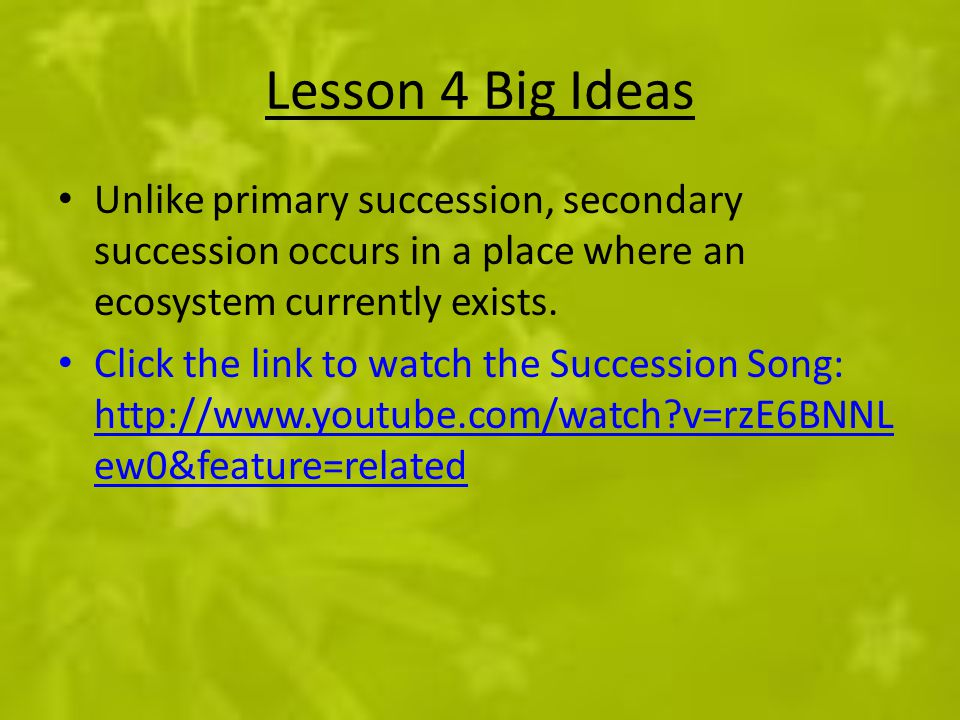 Lesson 4 Big Ideas Unlike primary succession, secondary succession occurs in a place where an ecosystem currently exists.