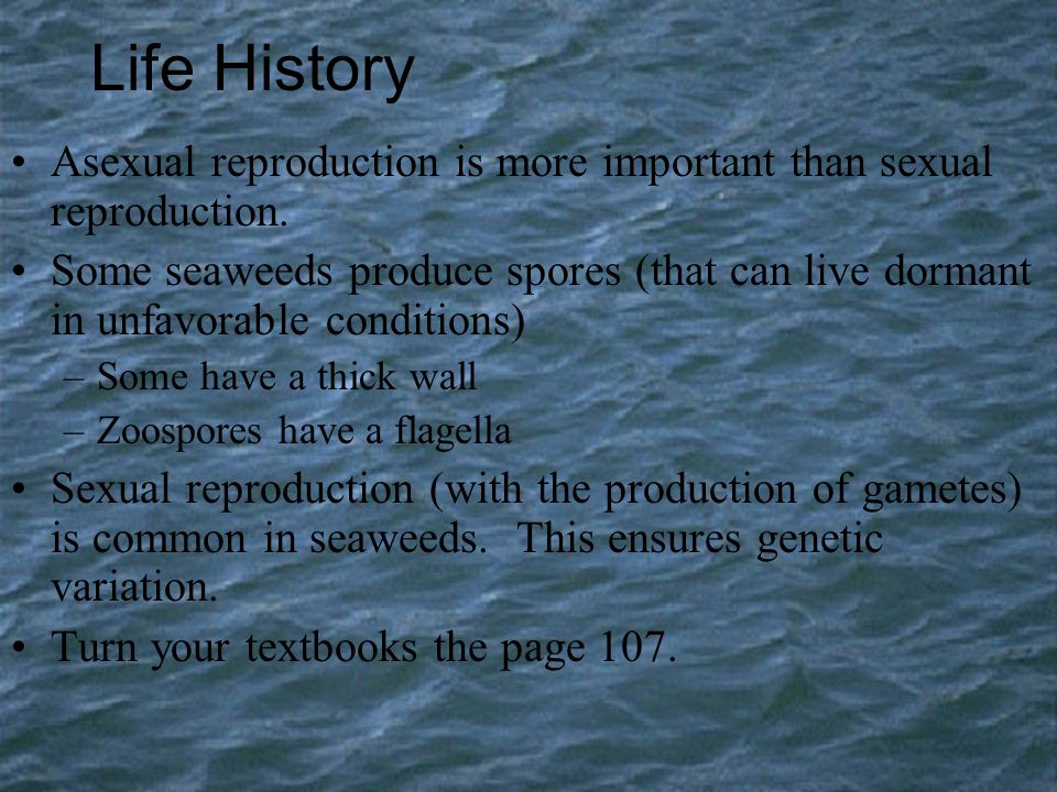 Life History Asexual reproduction is more important than sexual reproduction.