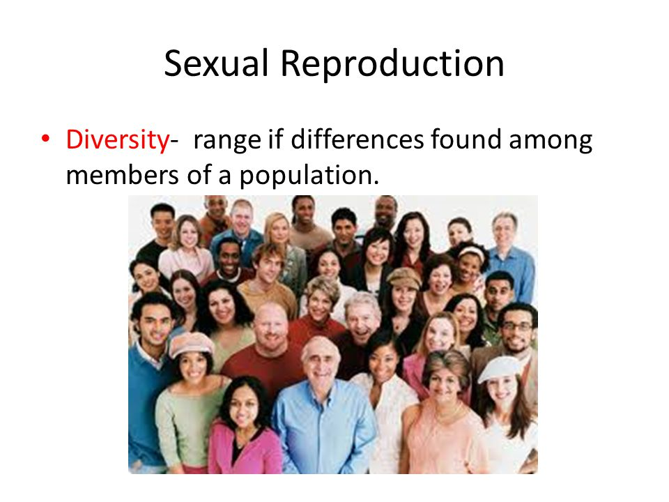 Sexual Reproduction Diversity- range if differences found among members of a population.