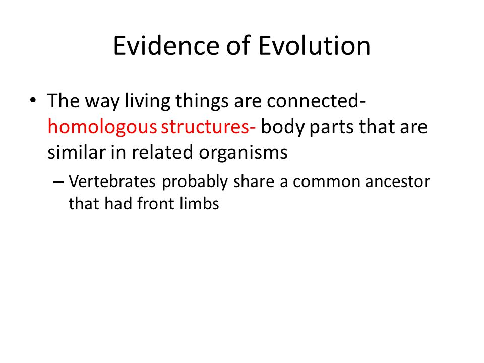 Evidence of Evolution The way living things are connected- homologous structures- body parts that are similar in related organisms.