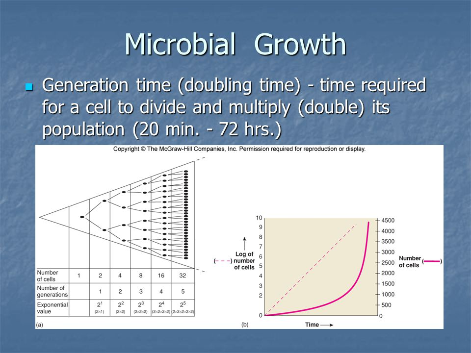 Microbial Growth Generation time (doubling time) - time required for a cell to divide and multiply (double) its population (20 min.