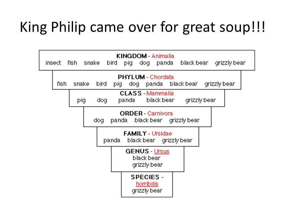 King Philip came over for great soup!!!