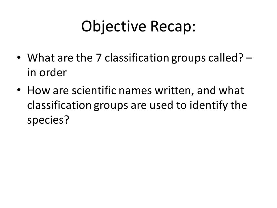 Objective Recap: What are the 7 classification groups called – in order.
