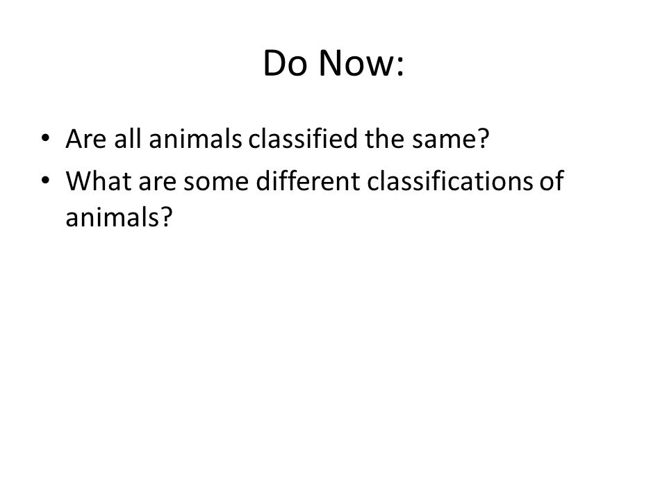 Do Now: Are all animals classified the same