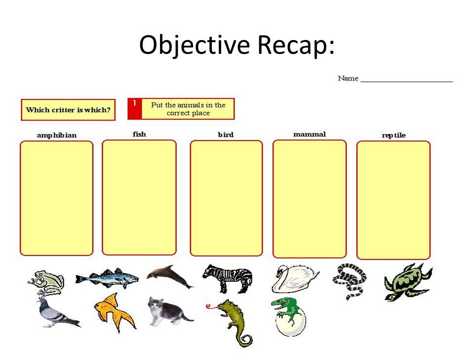 Objective Recap:
