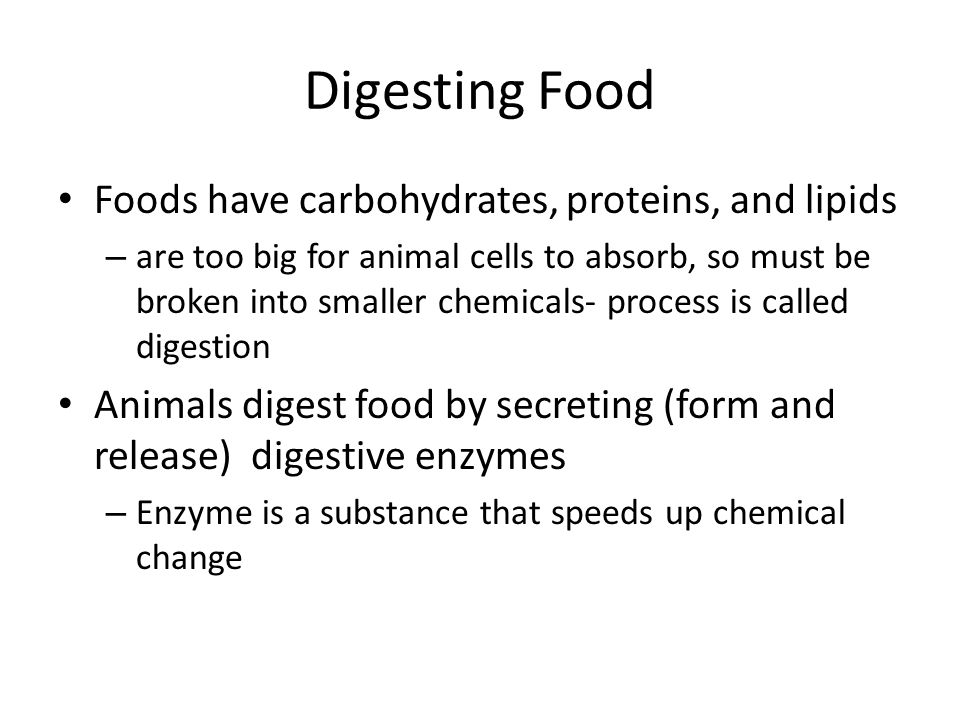 Digesting Food Foods have carbohydrates, proteins, and lipids