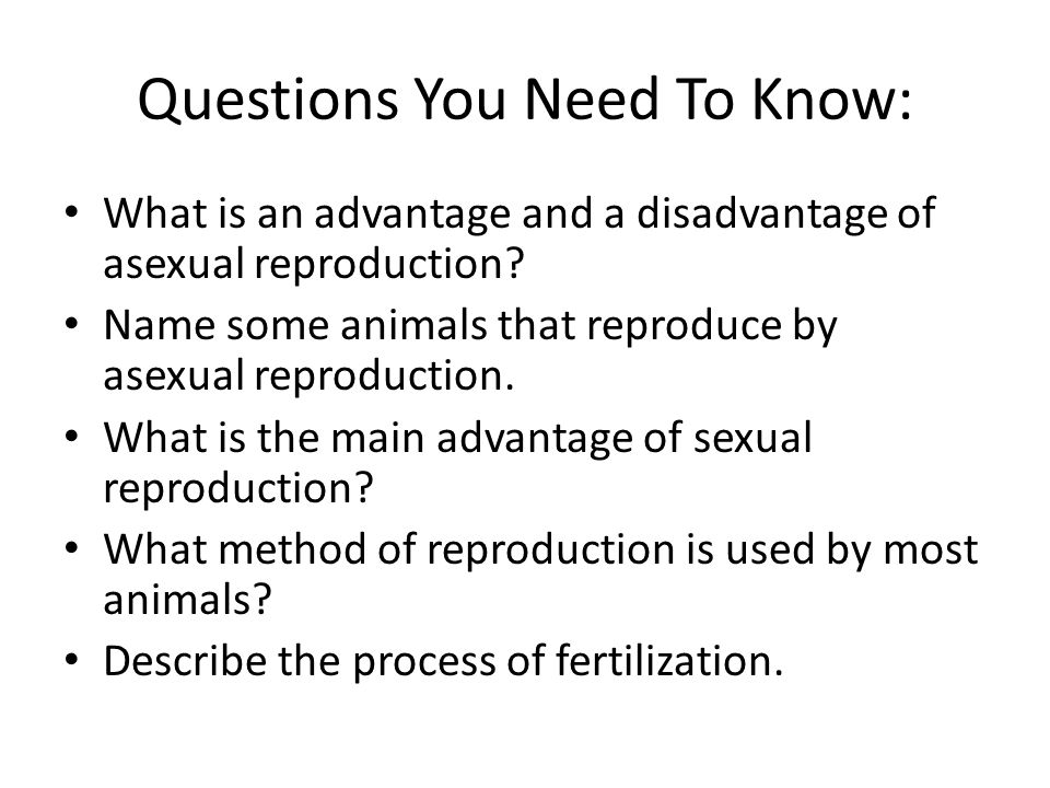 Questions You Need To Know: