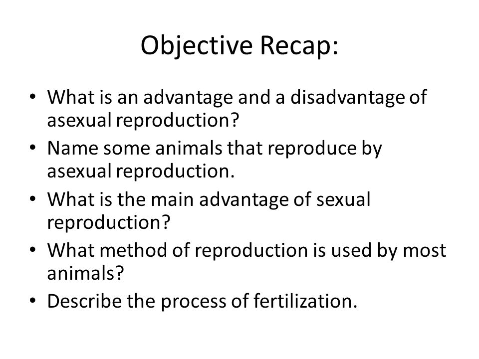 Objective Recap: What is an advantage and a disadvantage of asexual reproduction Name some animals that reproduce by asexual reproduction.