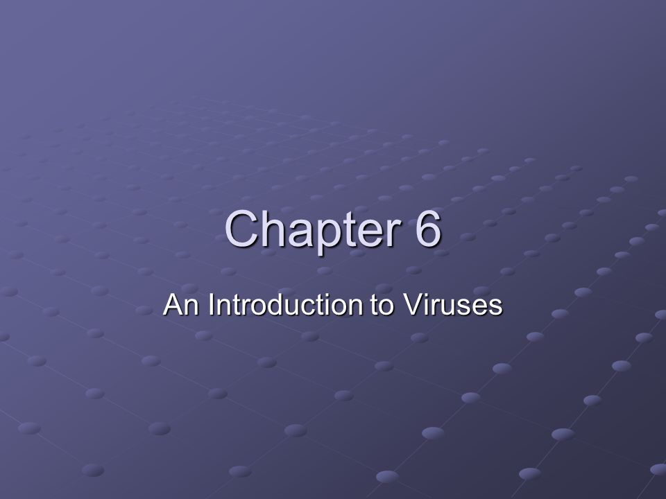 An Introduction to Viruses