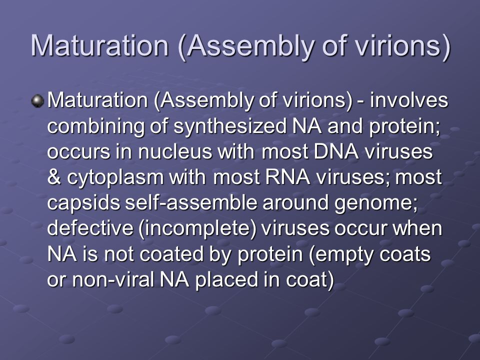 Maturation (Assembly of virions)