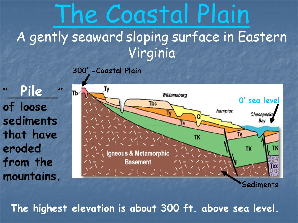 The Coastal Plain A gently seaward sloping surface in Eastern Virginia