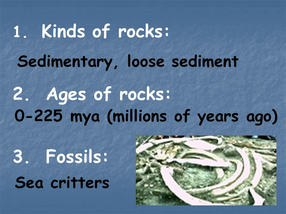 Ages of rocks: Fossils: Sedimentary, loose sediment