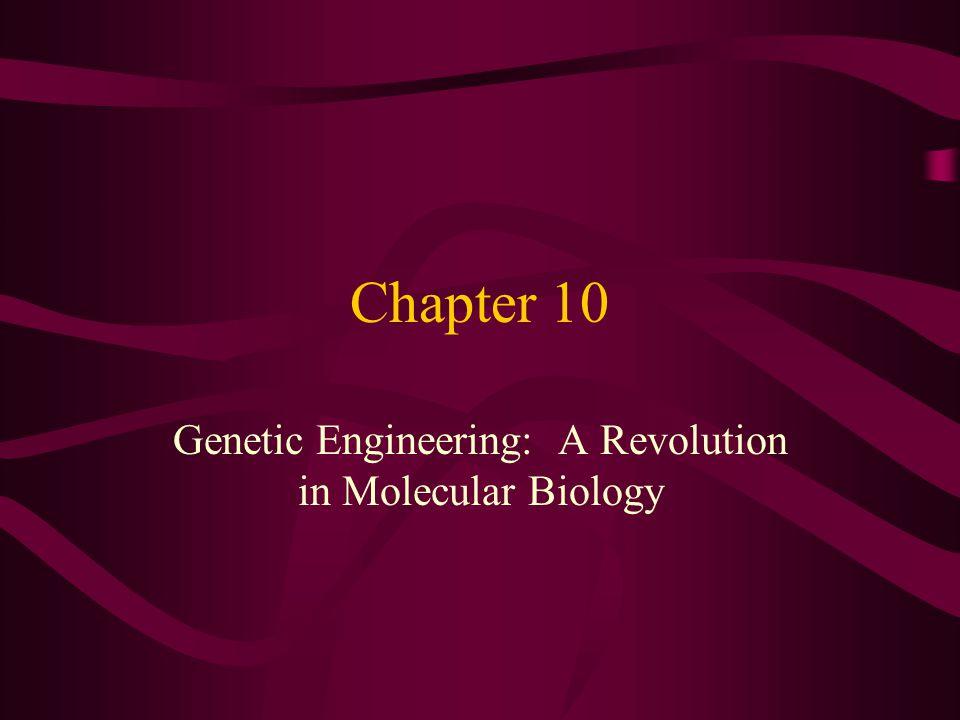 Genetic Engineering: A Revolution in Molecular Biology