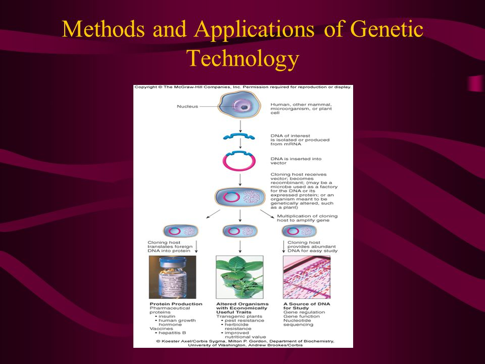 Methods and Applications of Genetic Technology
