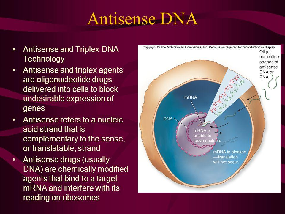 Antisense DNA Antisense and Triplex DNA Technology