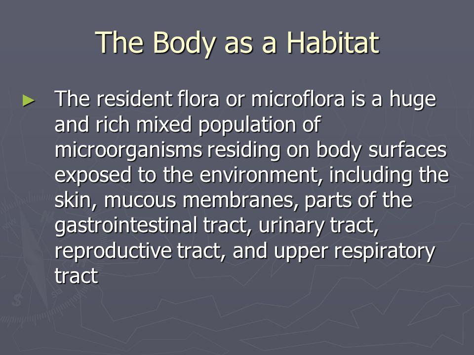 The Body as a Habitat