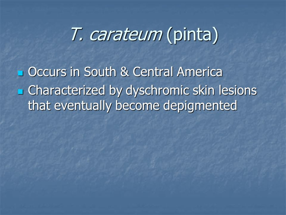 T. carateum (pinta) Occurs in South & Central America