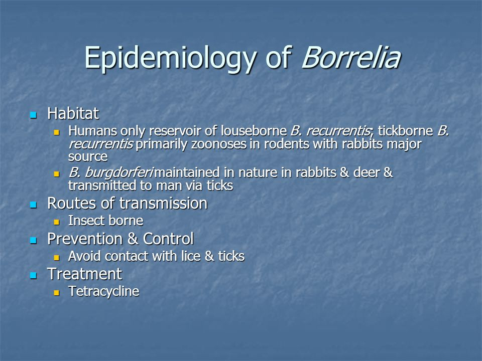Epidemiology of Borrelia