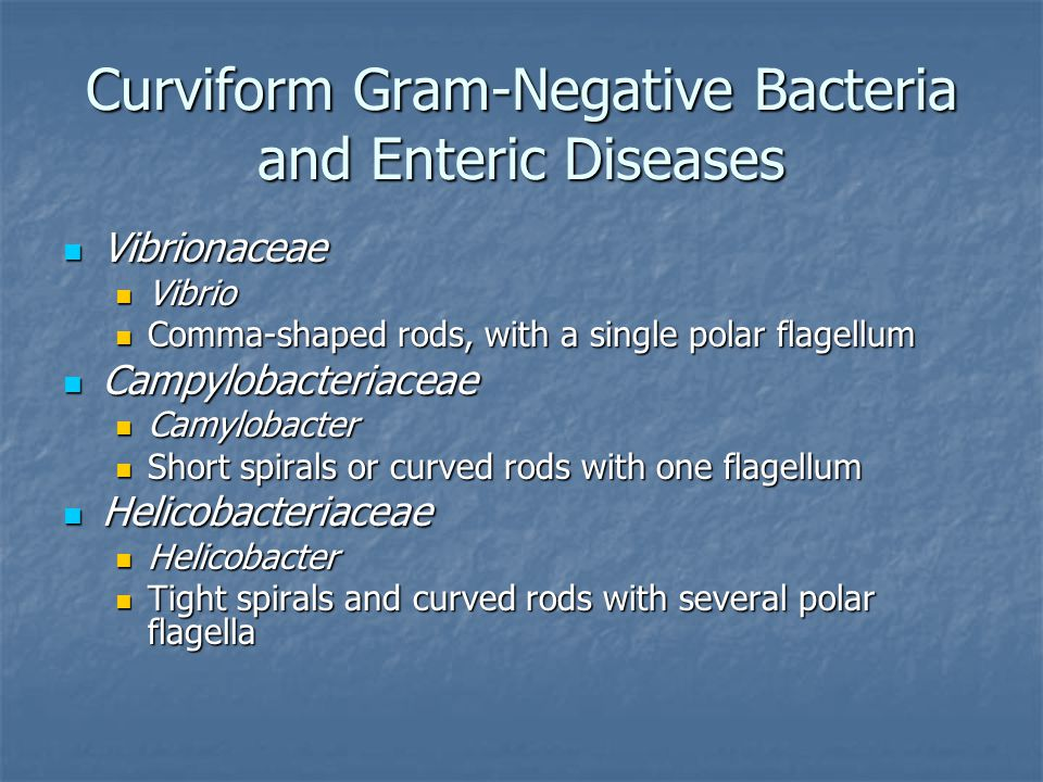 Curviform Gram-Negative Bacteria and Enteric Diseases