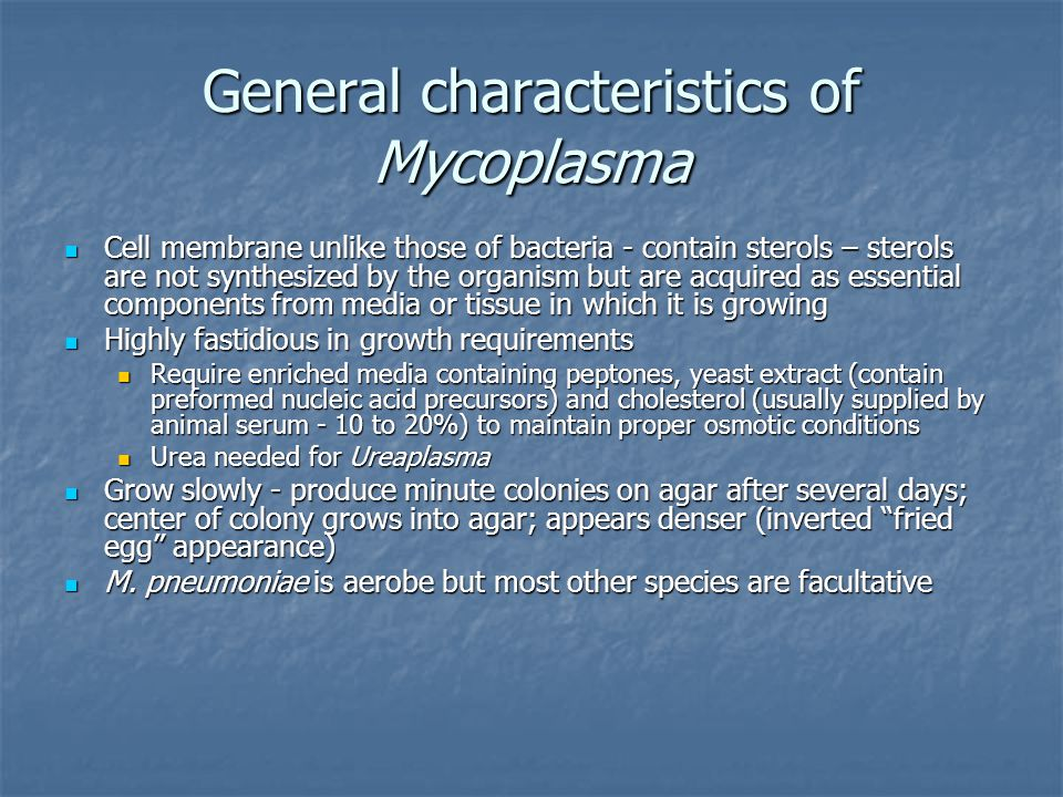 General characteristics of Mycoplasma