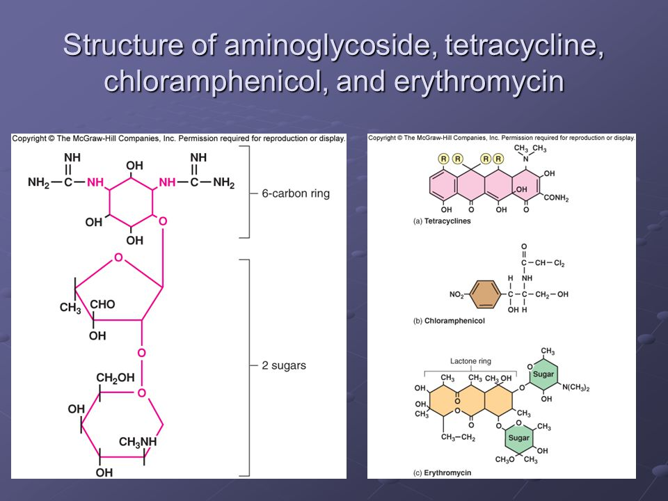 Structure of aminoglycoside, tetracycline, chloramphenicol, and erythromycin