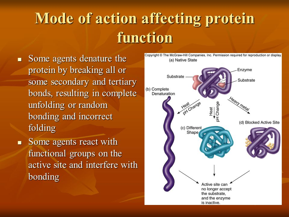 Mode of action affecting protein function