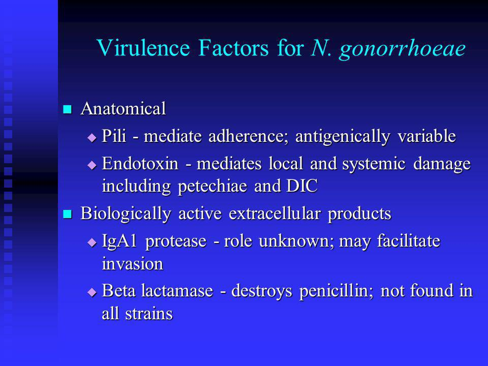 Virulence Factors for N. gonorrhoeae