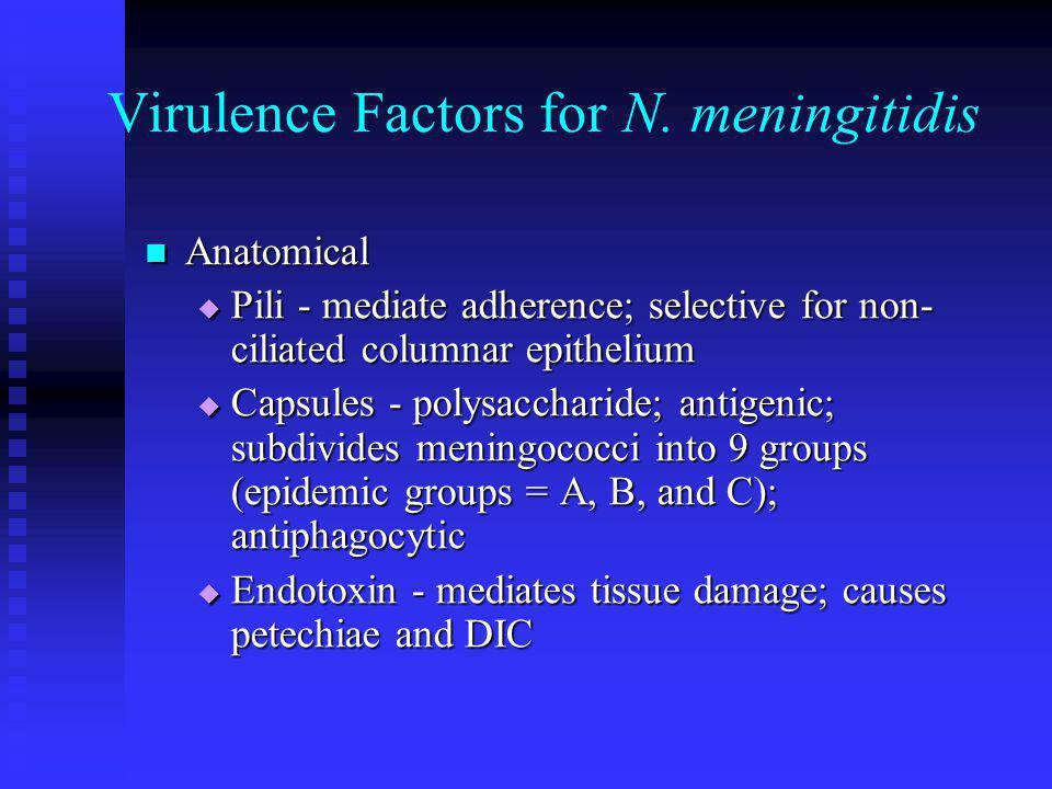 Virulence Factors for N. meningitidis