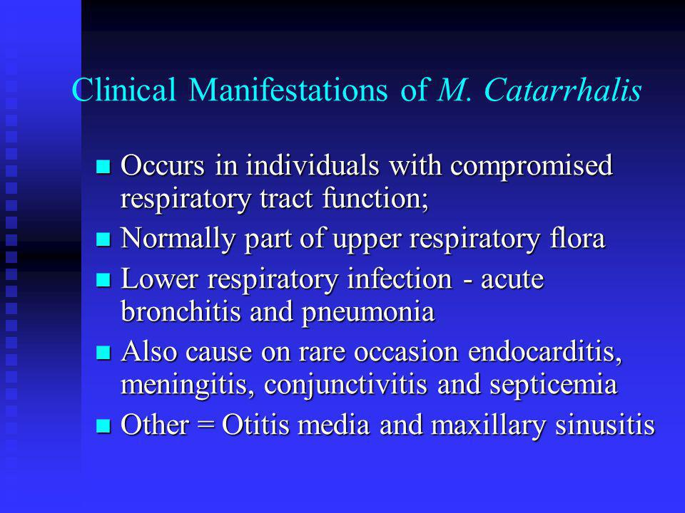 Clinical Manifestations of M. Catarrhalis