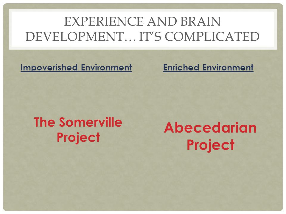 Experience and Brain Development… It's complicated